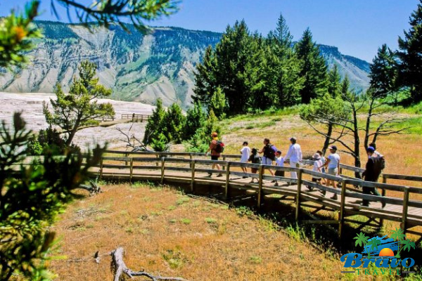 Family hiking in Yellowstone National Park